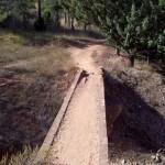 Puentecito del tramo final de la senda de bajada