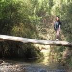 El rio baja con bastante caudal