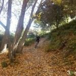 camino hacia Alqueria Nova y