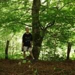 El Bosque de Peloño
