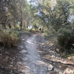 Inicio de la senda de subida hacia la carrasqueta