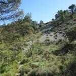 Arenal visto desde abajo