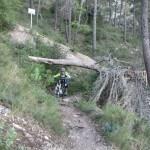 Senda de bajada desde el la cima del Benicadell