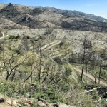 Vista de la pista por la que subimos con el paisaje arrasado por un incendio