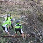 Aprovechamos para limpiar la senda
