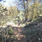 Senda hacia el Barranc del Carrascalet