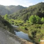 Rio Serpis junto a la vía verde