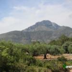 Vista del Benicadell desde el camino