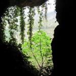 Ventana de la cueva