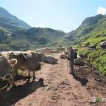 Inicio de la ruta hacia la Cabaña de Aguas Tuertas