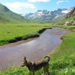 Aguas Tuertas - Huesca