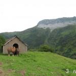 Refugio del Saburcal