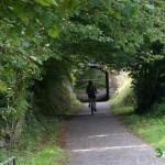 La vegetación crea auténticos túneles verdes