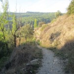 Primera senda que tomaremos desde Olba