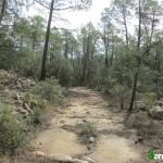 Camino desde el Corral de Herrando hacia el Mas de las Monjas