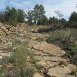 Camino de los Losares hacia Rubielos de Mora