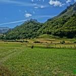El camino pasa junto a praderas de pastos magnificas