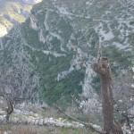 Vista del sendero hacia Cova Santa
