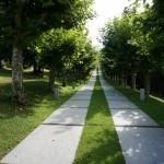 Camino de los jardines