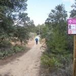 Inicio del camino hacia el Puig