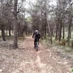 Senda hacia la carretera de la Venta dels Cuernos