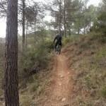 Senda desde la Carretera hacia la Venta dels Cuernos