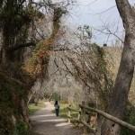 Camino a la Playeta
