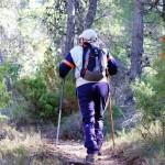 Hacia el Mas de Tetuan por la senda
