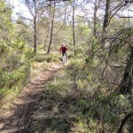 Iniciamos el descenso por senda desde El Palomaret