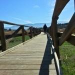 Pasarela de acceso a la Albufera de Gaianes