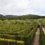 Laberinto vegetal de Casa Tápena (foto de Alicante Natura)