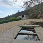 Font de la Bernia