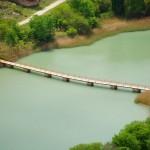 Puente de Tolosa