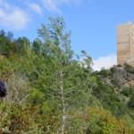 Llegando al Castillo de Carrícola