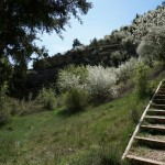 Tramo de escaleras que hemos bajado hacia el río