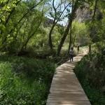 Cruzaremos el río por varios puentes de madera