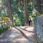 Font del Tarragó