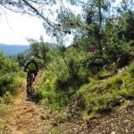 fin de la senda de bajada a Bocairent