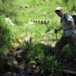 Paso del barranco d'Els Molineses
