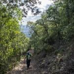 Camino hacia el Barranc de l'Infern