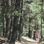 La subida entre el bosque presenta tramos bastante duros