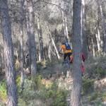 Senda entre el bosque