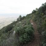 Senda hacia la cima del Benicadell