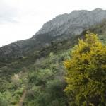 Vista del Benicadell a nuestra espalda