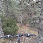 Sendero desde Javalambre a Camarena de la Sierra