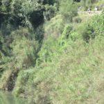 Zona habilitada para el paseo junto al Rio Albaida