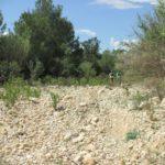 Cauce seco del Barranc del Salt