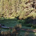 Fuente / abrevadero en el Barranco de los Pradillos