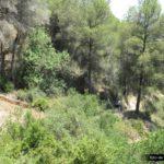 Tramo final de senda tras el Acueducto hacia Xàtiva
