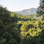 Vista del valle del Rio Mundo desde la subida al nacimiento